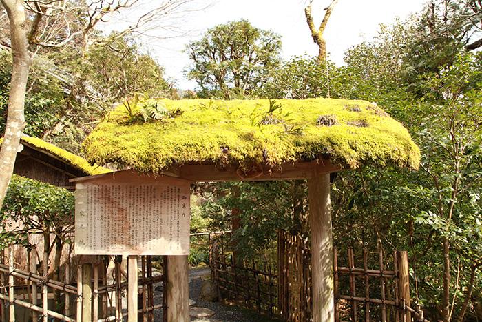 京都大原 寂光院 kyoto guide taxi