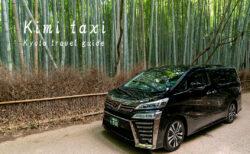 kImi taxi new car!TOYOTA VELLFIRE 3.5 liter