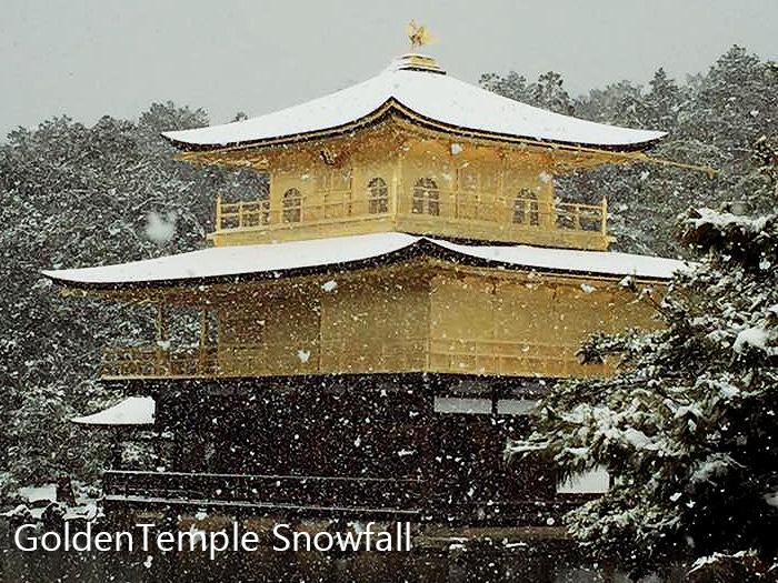 Golden Temple Snowfall