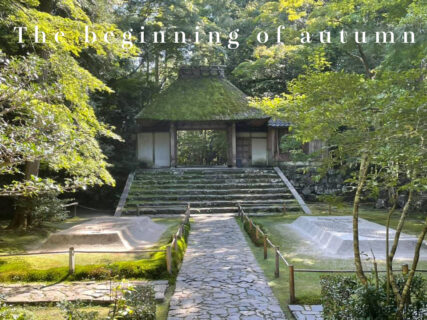 2021年秋 京都観光ダイジェスト